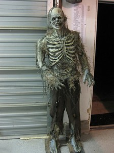 Swamp Zombie Halloween Costume