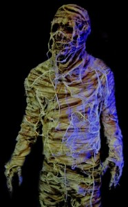 Halloween Mummy Costume