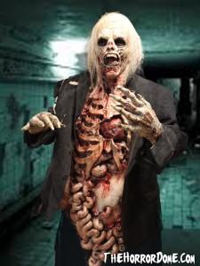 Halloween Zombie Walker Costume